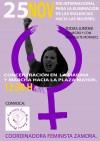 ZAMORA. Manifestación del Movimiento Feminista